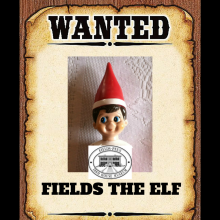 FIELDS THE ELF